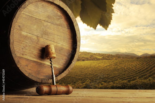 Vineyard © stokkete