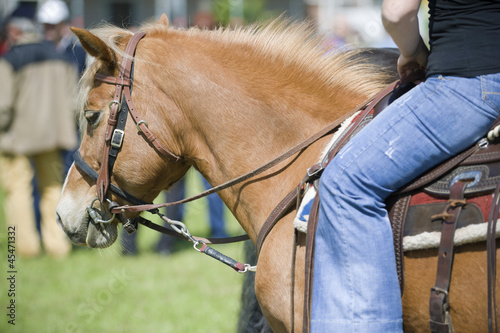 Raider and horse detail