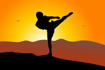 Silhouette of martial art  - high kick and mountains - sunrise
