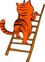 Cat on a ladder without background