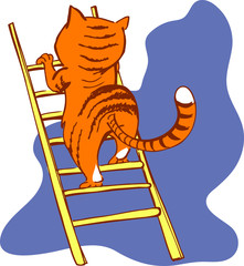 Cat on a ladder with the background