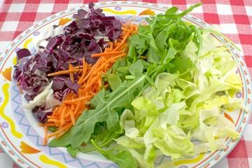 Mix di insalate (radicchio, carota, scarola, rucola)