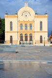 Pecs sinagogue in Hungary poster