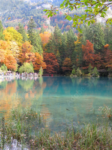 Trouty lake Blausee, Switzerland