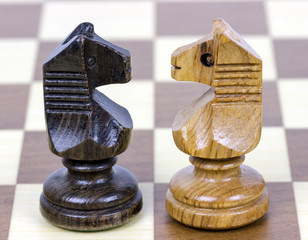 two chess horse
