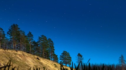 The motion of stars in a forest on the cliff