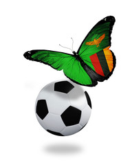 Concept - butterfly with Zambia flag flying near the ball, like