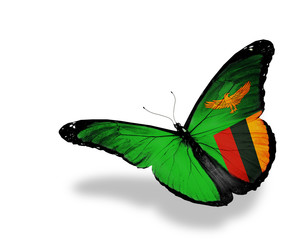 Zambia flag butterfly flying, isolated on white background