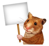 Pet Hamster Holding A Blank  Sign