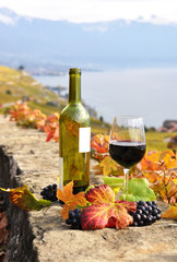 Red wine and grapes on the terrace vineyard in Lavaux region, Sw
