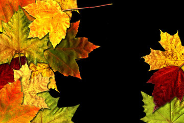 Autumn on black background.