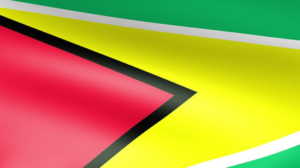 Guyana Flag Waving