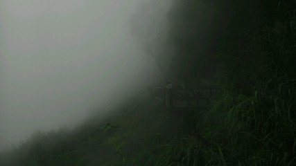 Moving fog in the mountain