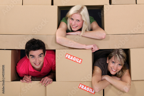 People in a wall of boxes