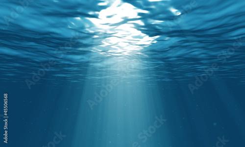 Poster Water planten light underwater in the ocean
