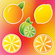 lemon, lime and orange stickers