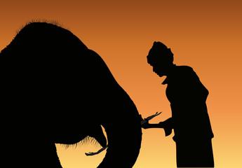 Cornac et son éléphant