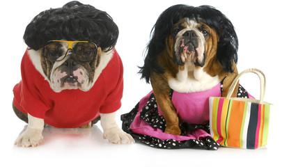 dog husband and wife