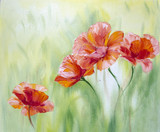 Fototapety Poppies,  oil painting on canvas