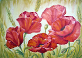 Fototapety Poppies in wheat , oil painting on canvas