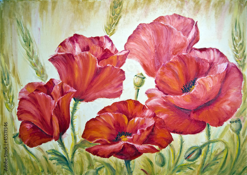 Poppies in wheat , oil painting on canvas - 45519346