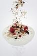Fruit muesli falling into a dollop of yogurt