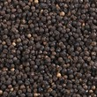 Peppercorns (macro zoom)