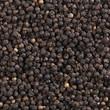 Peppercorns (macro zoom)