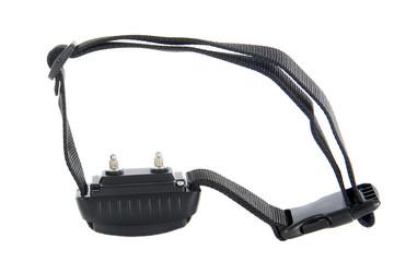 collier électrique anti-aboiement ou dressage