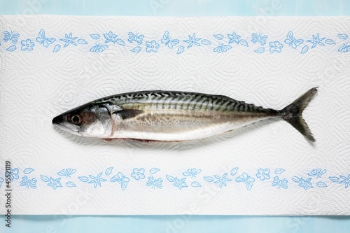 Fresh mackerel on kitchen paper
