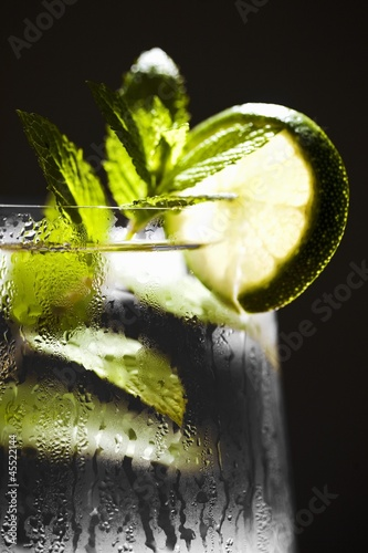 Vodka Cocktail with Mint and Lime