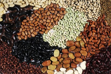 Many different types of beans (full-frame)