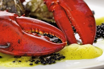 Lobster, caviar and oysters on plate (close-up)
