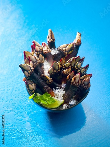 Goose neck barnacles in a bowl