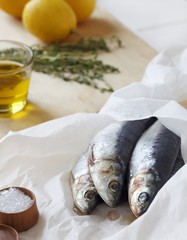 Fresh Sardines on Parchment Paper with Salt, Lemon and Herbs