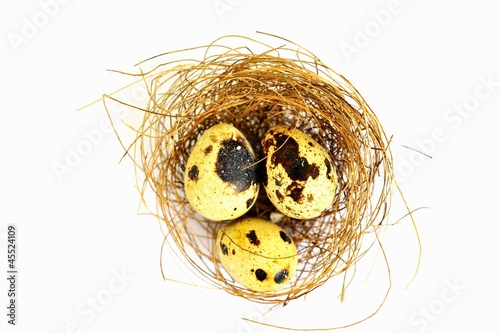 Three quail's eggs in a nest (seen from above)