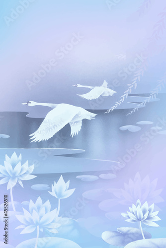 two swans flying over the pond
