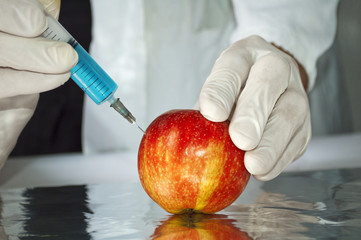 Red apple in genetic engineering laboratory, gmo food concept