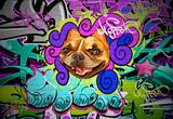 Fototapete Tier - Kunst - Graffiti