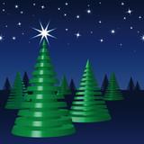 Frohe Weihnachten, Tannenbäume, Sternenhimmel, Nacht