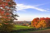 Fototapety Herbstwald