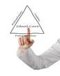 Diagram of ideal care
