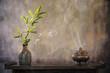 Fototapeten,zen,bambus,aromatherapie,aroma