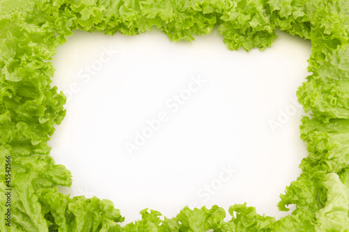 Frame made of salad