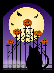 Halloween image with black cat