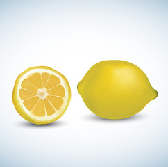 Realistic vector lemon