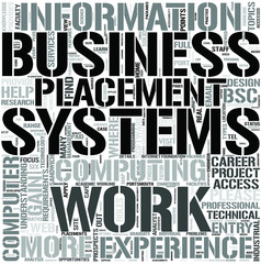 BusinessInformation Systems Word Cloud Concept