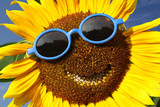 Sunflower with a smile - Fine Art prints