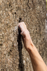 Hand of climber during climbing the mountain