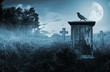 Leinwandbild Motiv Crow on a gravestone